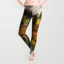 Transition Of The Seasons in Rocky Mountains Colorado by OLena Art Leggings