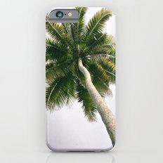 Foggy Palm Tree iPhone 6s Slim Case