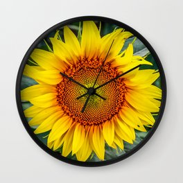 Solo Sunflower Wall Clock