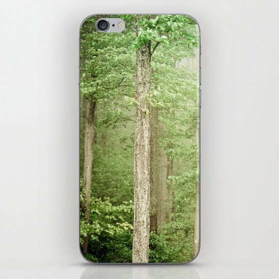 The Marvel of Ordinary Things iPhone & iPod Skin