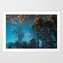 Reflected Trees Art Print