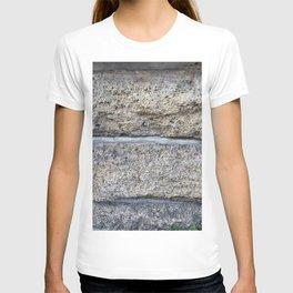 Longlasting Good Idea Photography T-shirt