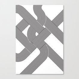 step/snek Canvas Print