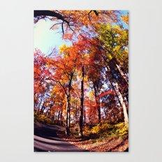 Fisheye Fall II  Canvas Print