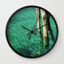 Circling Fish Wall Clock