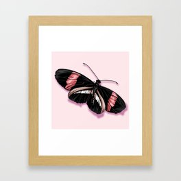 Papillon rouge et noir Framed Art Print