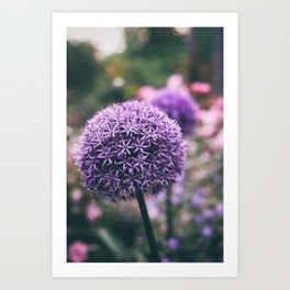 add some purple Art Print
