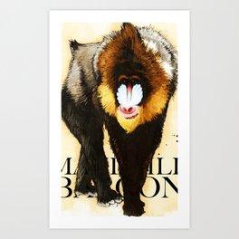 Mandrill Art Print