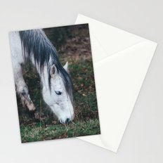 Gentle horse Stationery Cards