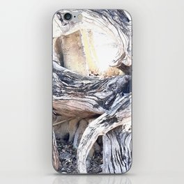 Gnarly iPhone Skin