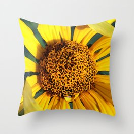Horicon Marsh Sunflower Throw Pillow