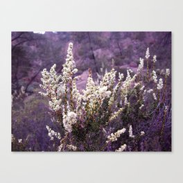 Pinnacles in Purple Canvas Print