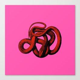 Snek 3 Snake Orange Pink Canvas Print