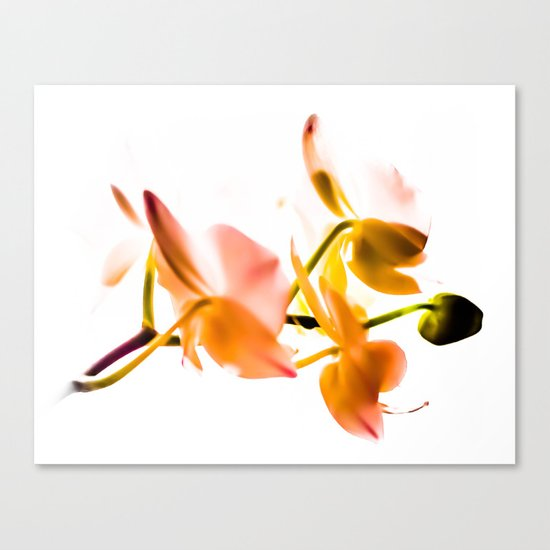 for luck:) Canvas Print
