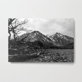 Feeling The Nature Metal Print
