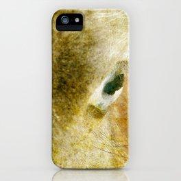 Blue Eyed Horse iPhone Case