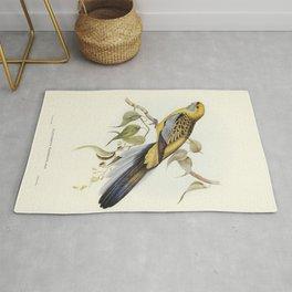 Yellow-rumped Parakeet (Platycercus flaveolus) illustrated by Elizabeth Gould (1804-1841) for John G Rug