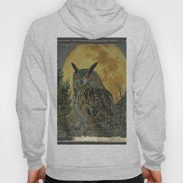 SHABBY CHIC ANTIQUE NIGHT OWL  FULL MOON Hoody