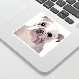 Bully Bull Dog Sticker