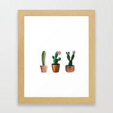 Three Cacti On White Background Framed Art Print
