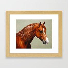 Chestnut Morgan Horse Framed Art Print