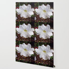 Enchanted Flower Wallpaper