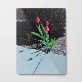 Three Red Tulips Metal Print
