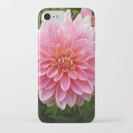 PINK DAHLIA FLOWER PETALS iPhone Case
