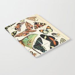 Papillon I Vintage French Butterfly Charts by Adolphe Millot Notebook