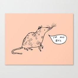 Rats Aren't Evil Canvas Print
