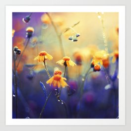 Summer Dream Art Print