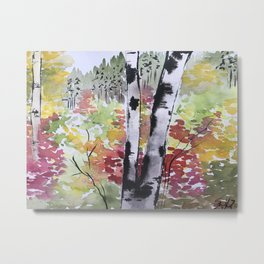 Birch Tree in Autumn Metal Print