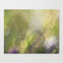 Spring Drops Canvas Print