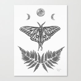 Spanish Moon Moth Canvas Print