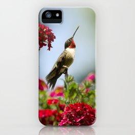 Hummingbird Guardian iPhone Case