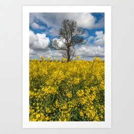 Sea of Yellow Art Print