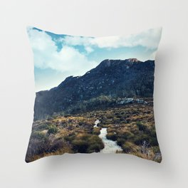 Twilight Track Throw Pillow