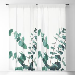 Eucalyptus II Blackout Curtain