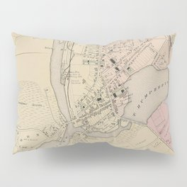 Vintage Map of Salisbury MD (1877) Pillow Sham