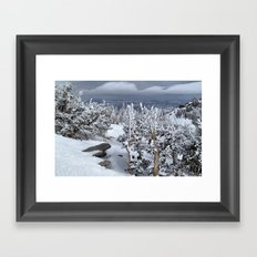 Mt Rose Framed Art Print