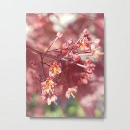 Budding Pink Tree Metal Print