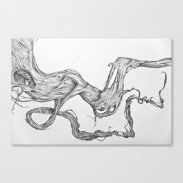 root series: 03 Canvas Print