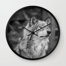 Beautiful wolf Wall Clock