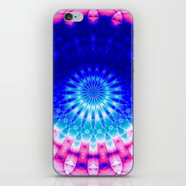 Concentric Field (blue-pink) iPhone Skin