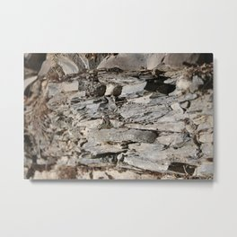 Nature in the French Alps 3 Metal Print