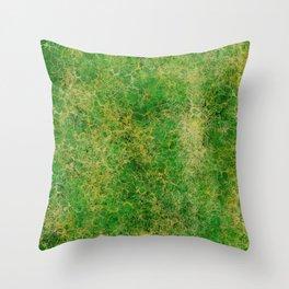 I Dieci Mondi (7.Apprendimento/Studio) Throw Pillow