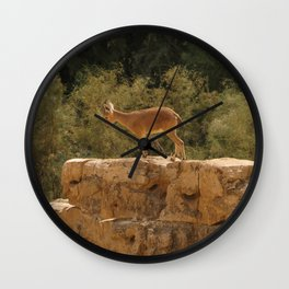 Yael Wall Clock