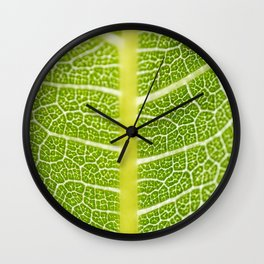 Textures of the leaf of a fig tree Wall Clock