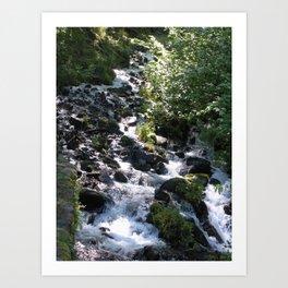 Wakeena Falls Art Print