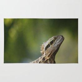 Water Dragon Rug